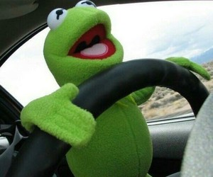 frog and kermit image