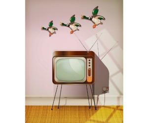 duck, vintage room, and retro television image