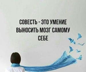 цитаты на русском image