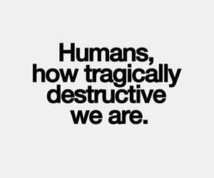 quotes, humans, and destructive image