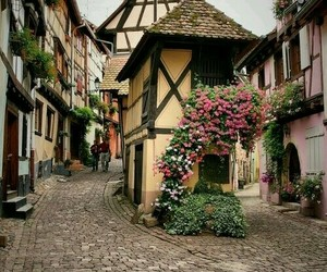 flowers, beautiful, and france image