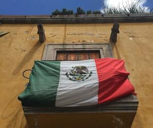 flag, bandera, and san miguel de allende image