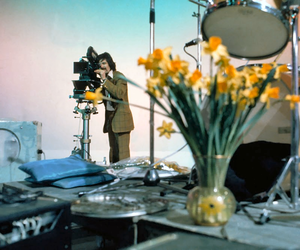 beatles, hd, and ringo starr image