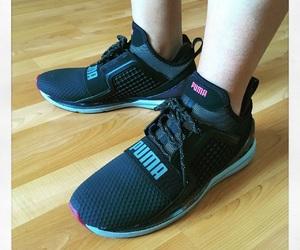 hi-tech, sneakerholics, and ignite image