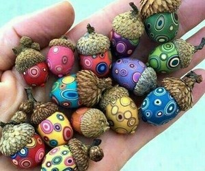 acorns, art, and colorful image
