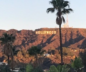 hollywood and hollyweed image