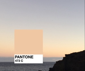 wallpaper, background, and pantone image