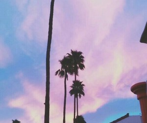 sky, palms, and wallpaper image