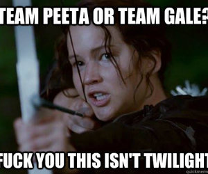 twilight, hunger games, and gale image
