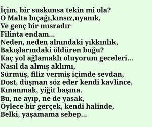 turk, türkçe, and şair image