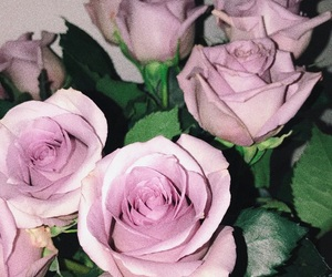 aesthetic, flower, and grunge image