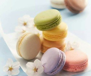 flowers and ‎macarons image