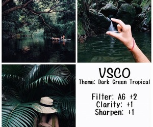 filter, vsco, and photography image