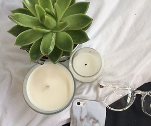 candle, plants, and glasses image