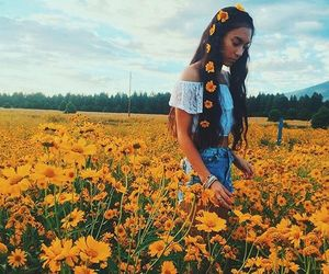 bohemian, flowers, and daisies image