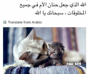 arabic, words, and my mother image