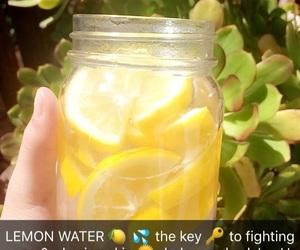 lemon and tips image