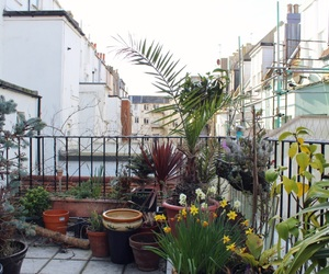 aesthetic, balcony, and nature image
