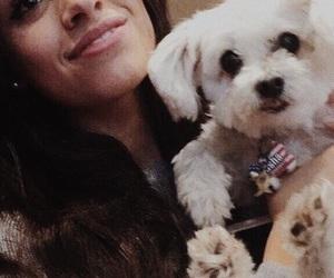 puppy and camila cabello image