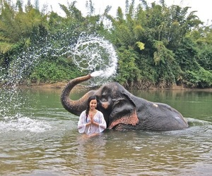elephant, girl, and tropical image