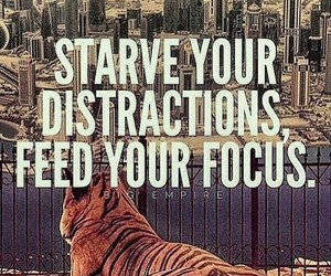 focus, motivation, and quote image