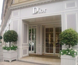 dior, style, and love image