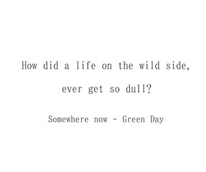 green day, Lyrics, and music image