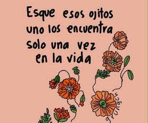 love, frases, and eyes image