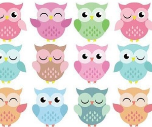 owl and pattern image