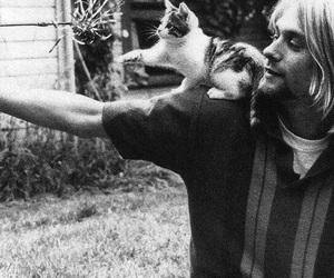 cat, kurt cobain, and nirvana image