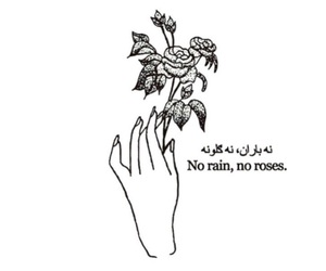everything, roses, and self love image