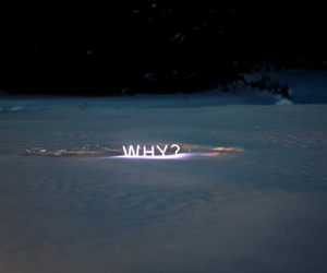 why, neon, and words image