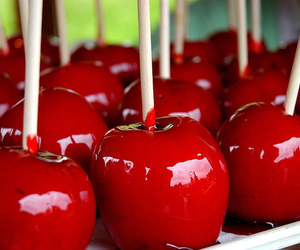 apple, food, and red image