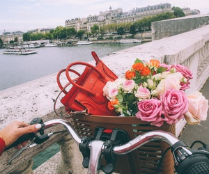 bag, celine, and flowers image