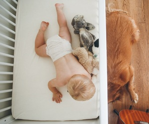 baby boy, dog, and baby room image