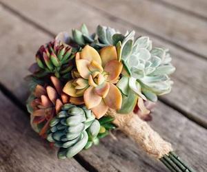 bouquet and succulents image