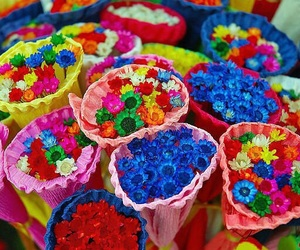 flowers, color, and colors image