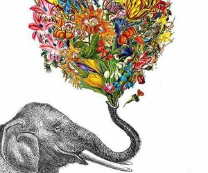 elephant, flowers, and colors image