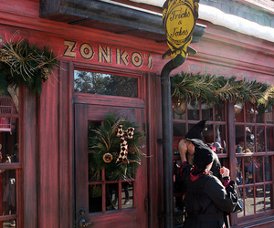 canon, florida, and harry potter image