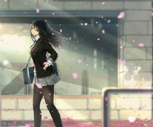 anime, cherry blossom, and girl image