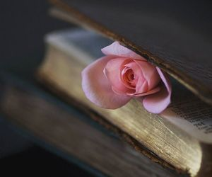 books, flowers, and rose image