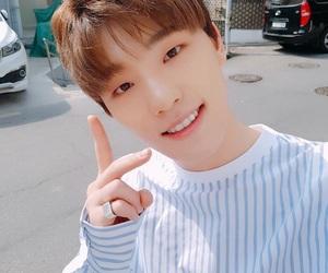 Seventeen, dino, and kpop image