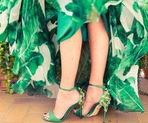 gabbana, italy, and leaf image