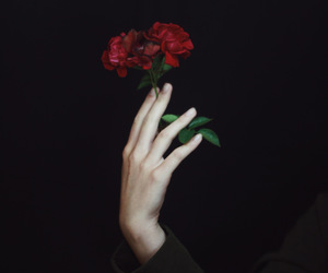 Darkness, hand, and pale image