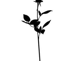black, draw, and flower image