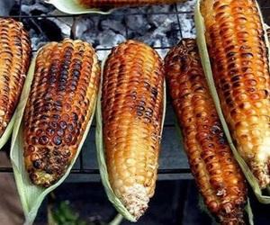corn and food image