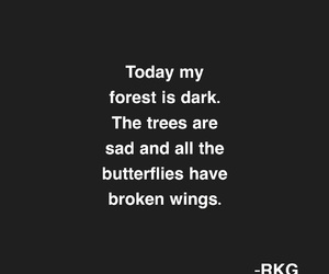 alone, broken, and broken wings image