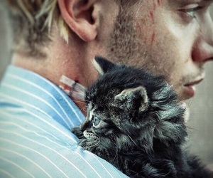 dominic sherwood, cat, and shadowhunters image