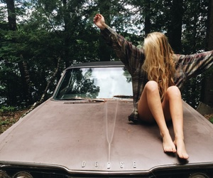 blonde, car, and forest image