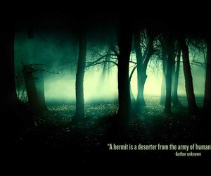forest, quote, and trees image